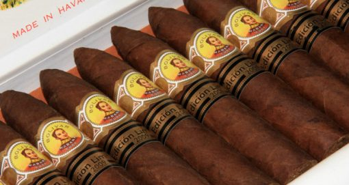 Bolivar Petit Belicoso 2009 Limited Edition