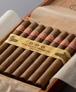Partagas 8 9 8 (Varnished)